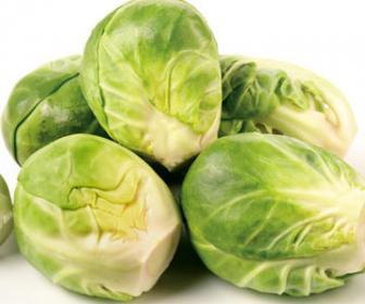 Технология выращивания брюссельской капусты