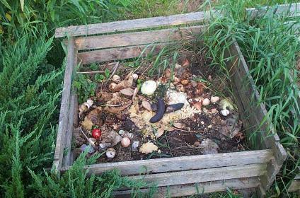 Приготовления компоста из бытовых отходов