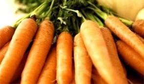 Средства борьбы с болезнями моркови