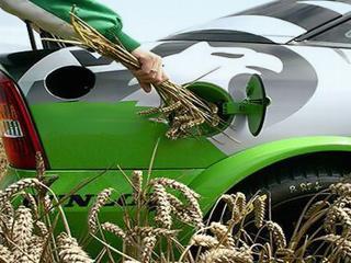 Сорго как сырье для производства биоэтанола