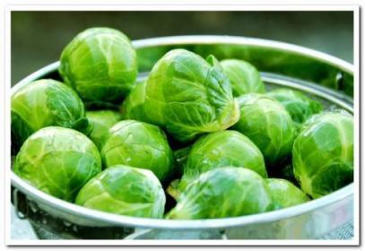 Как вырастить   брюссельскую капусту на семена