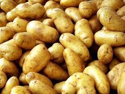 Описание сортов картофеля - Искра и Крымчатка