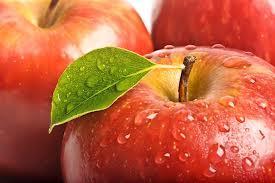 Сорт яблони Черноморское нежное. Описание