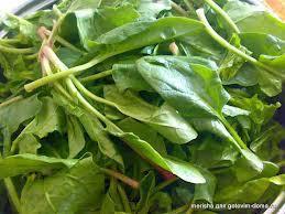 Биологические особенности шпината