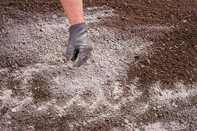 Щелочные почвы