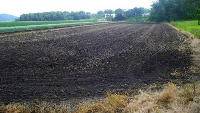 Плодородные почвы