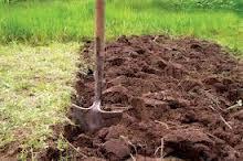 Истощенные почвы