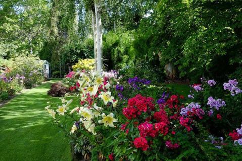 Чудо цветущего сада