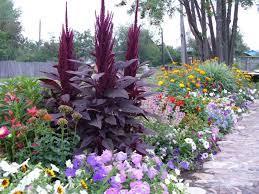 Что посадить в своем цветнике?