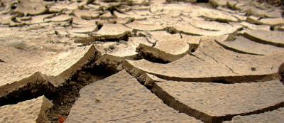 Гипсование на солонцеватых почвах