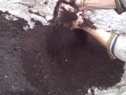 Как исправить реакцию почвенного раствора?