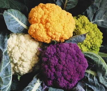 Как вырастить цветную капусту.