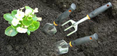 уход за растениями на участке