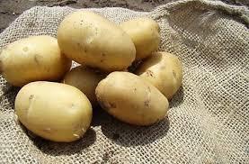 Неурожай картофеля
