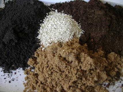 Можно ли для почвосмесей использовать морской песок?