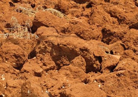 Как изменить структуру почвы