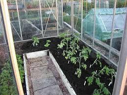 Посев растений в закрытом грунте
