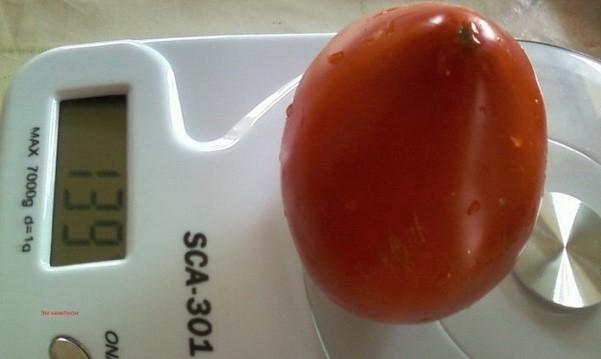Описание сортов томатов — Эм-чемпион, Тяжеловес Сибири