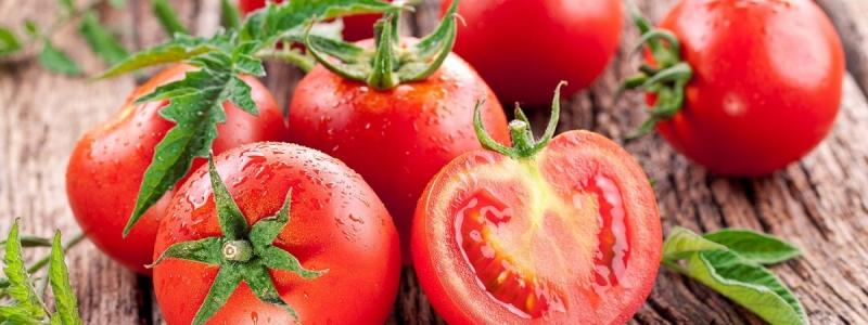 Хотите томатный урожай на загляденье?