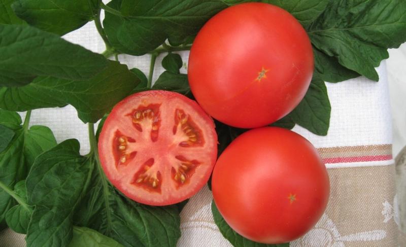 Характеристика сортов и гибридов томатов (Мечта, Настена Р1 и  Украинский солестойкий )