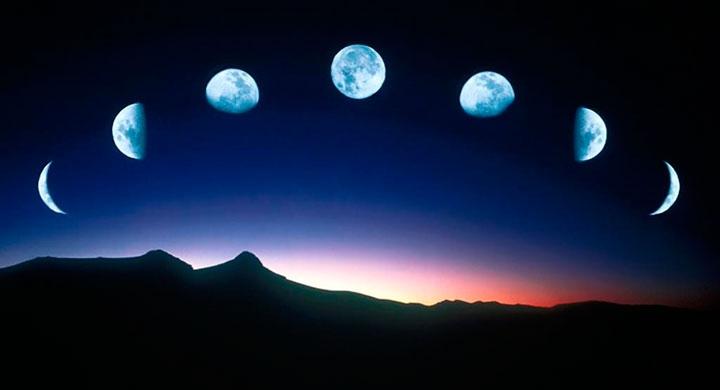Как и почему влияют фазы луны на растения