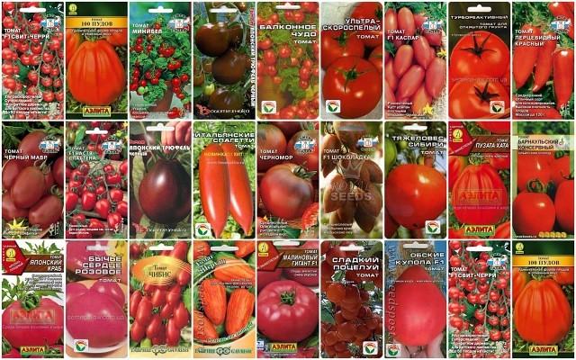 Как правильно выбирать семена, советы огородникам