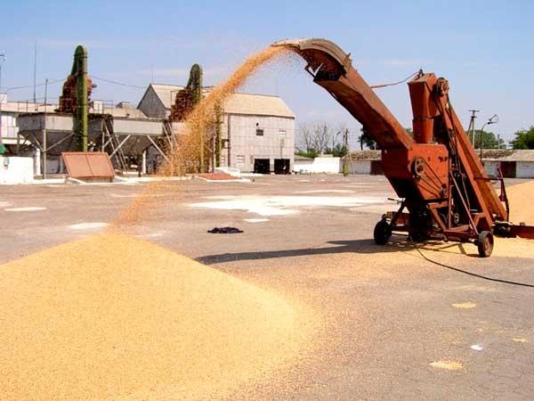 Как происходит очистка зерна